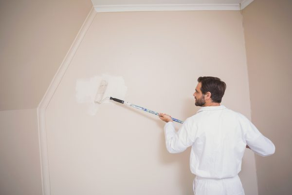 domestic commercial painting company